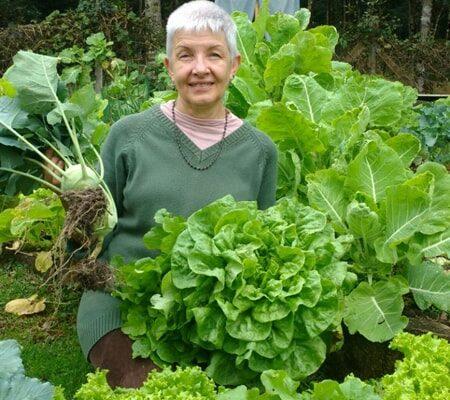 horta-organica (2)