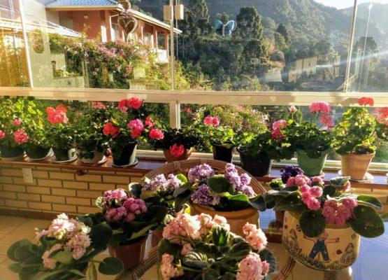 foto da mesa com flores_Easy-Resize.com
